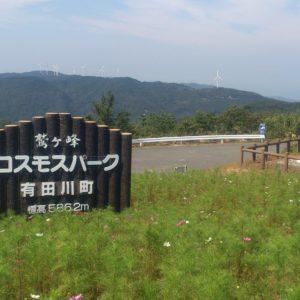 鷲ヶ峰コスモスパークへ行ってみよう!和歌山県有田川町の山奥を散策…